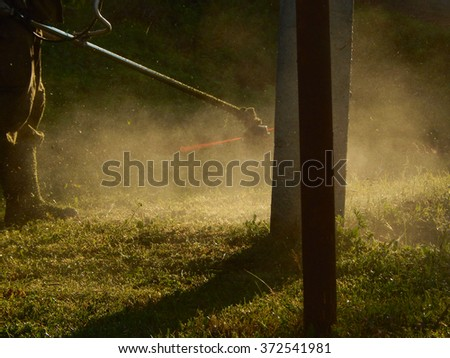 man mowing the grass, lawn mower - stock photo