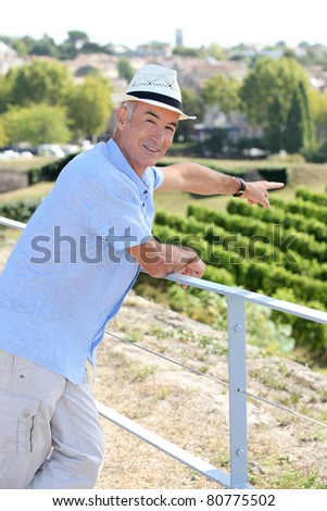 Man on holiday pointing at vineyard - stock photo