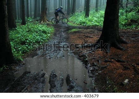 man on mountain bike on forest road - stock photo