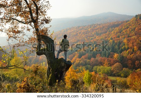 Man on the tree over wonderful autumn forest and autumn valley full of colors - stock photo