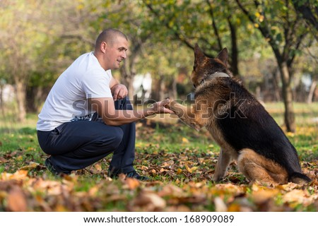 Man Playing With Dog German Shepherd In Park - stock photo