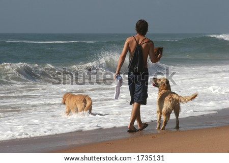 Man playing with his two dogs on beach - stock photo