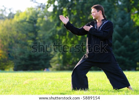 Man posing side view in a kung fu position ready to strike. - stock photo