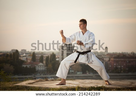 Man practicing martial arts outdoors - stock photo