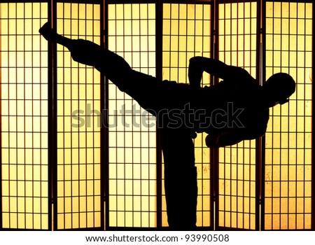 Man practising a martial art kung fu kick - stock photo