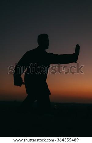 Man Practising Wushu at Sunset - stock photo