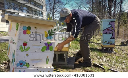 Man prepares hives in early spring for bees - stock photo