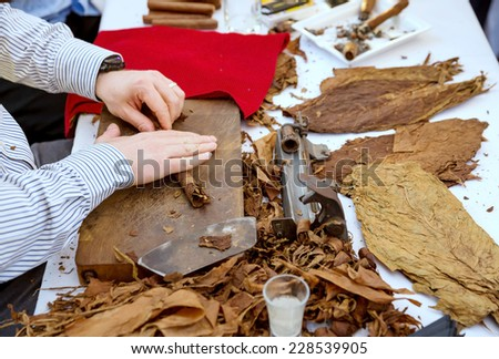 Man processing the tobacco leaves and making cigars with simple tools - stock photo