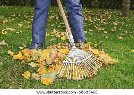 Man raking leaves in the garden - stock photo