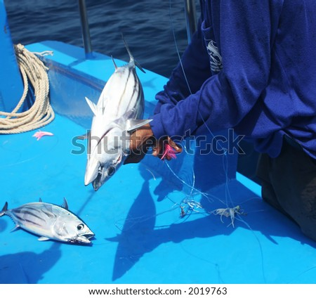 Man removing hook from fish just caught