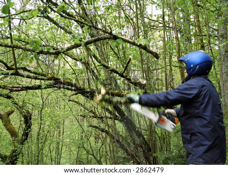Man removing old branch with chain saw (motion blur) - stock photo
