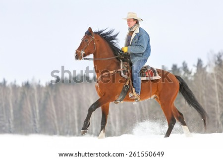Man riding a beautiful bay horse in winter landscape. - stock photo