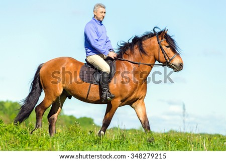 Man riding bay horse.