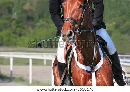 man riding horse, practicing before competition