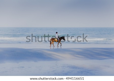 Man riding the beautiful horse on the sunny beach, Thailand, Asia