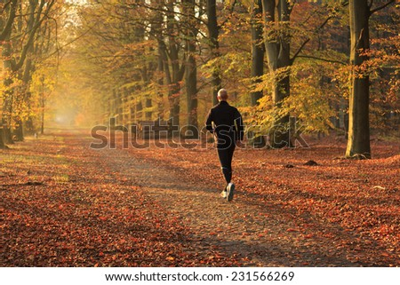 Man running in a autumn colored lane in the forest. - stock photo