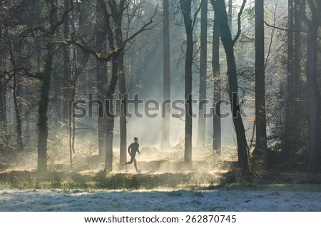 Man running in the forest on a foggy, spring morning.