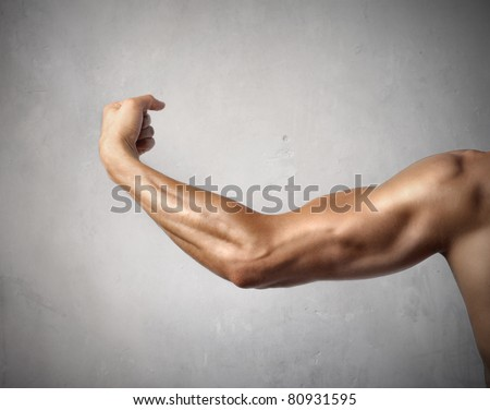 Man's biceps - stock photo