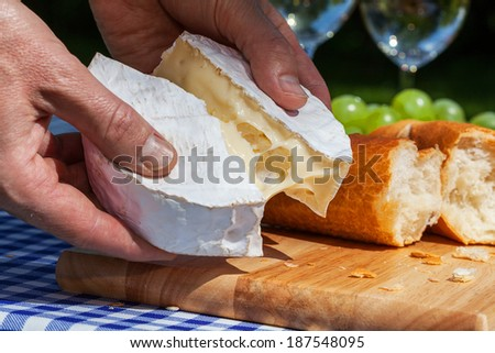 Man's hands holding camembert cheese - stock photo