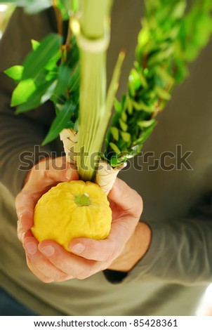 Man's hands holding the Lulav and Etrog, symbols of the Jewish festival of Sukkot - stock photo