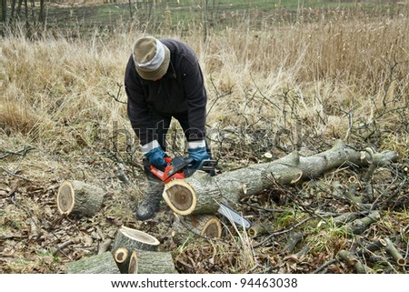 Man sawing the log of walnut tree in garden with chainsaw