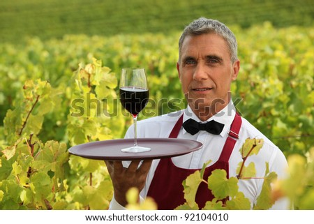 Man serving a glass of red wine in the middle of a vineyard - stock photo