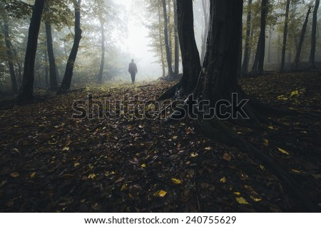 man silhouette in fantasy forest - stock photo