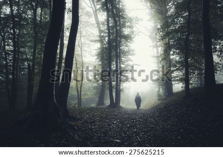 man silhouette in spooky forest - stock photo
