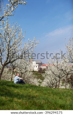 man sitting in the garden of blooming apple trees