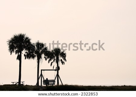 Man sitting on bench between two palm trees at sunset