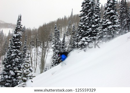 Man skiing powder snow in Utah on a stormy day, USA. - stock photo