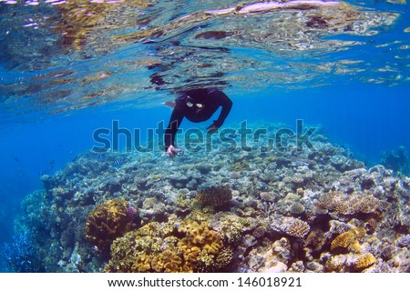 Man snorkeling on coral reef - stock photo