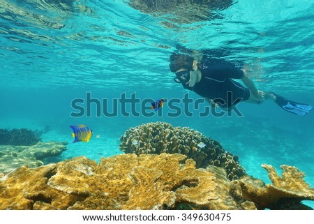 Man snorkeling underwater with a small colorful fish, looking at each other over a coral reef in the Caribbean sea - stock photo