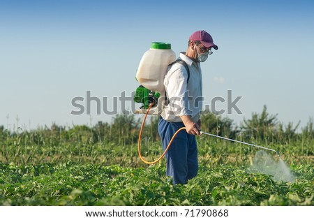 Man spraying vegetables in the garden - stock photo
