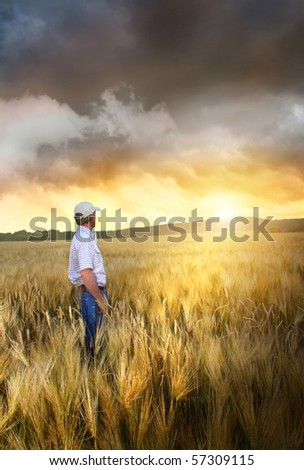 Man standing in a field of wheat at sunset - stock photo