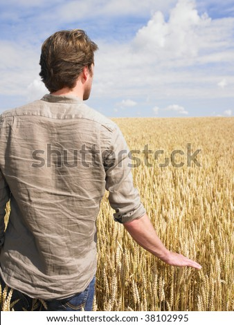 Man standing in wheat field touching crop - stock photo