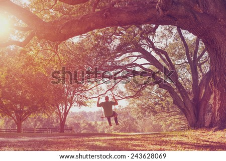 Man swinging from a large live oak tree branch in the countryside looking serene peaceful calm relaxing beautiful whimsical happy dreamy romantic with a retro vintage lens flare and light leak filter - stock photo