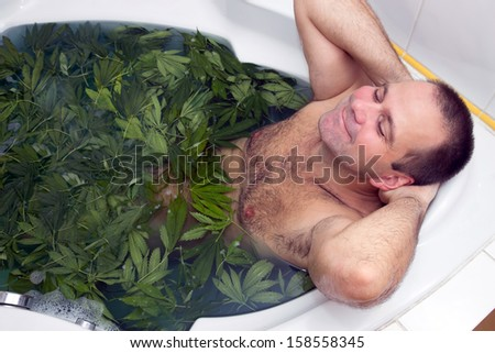 man taking a bath full of marijuana leaves - stock photo