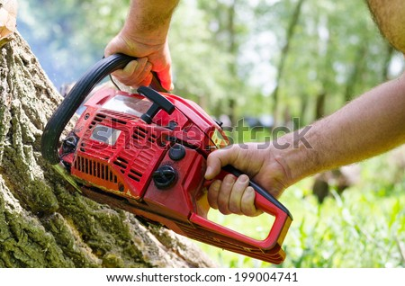 Man using a portable two-stroke petrol chainsaw to fell a tree trunk, closeup of his hands and the engine of the equipment - stock photo