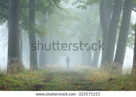 Man walking alone in a lane on a foggy, autumn morning. Shallow D.O.F.