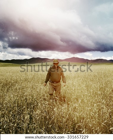 Man Walking Cornfield In A Beautiful Scenic View Concept - stock photo