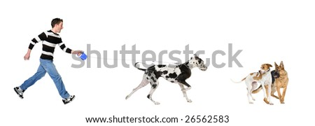 Man walking his dog (Great Dane 4 years) in front of a white background - stock photo