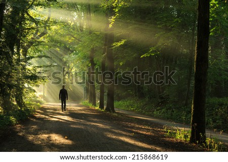 Man walking in a lane with the sunlight breaking through the trees. - stock photo