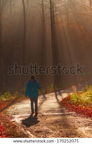 Man walking in a tunnel of trees on a foggy, autumn day. - stock photo