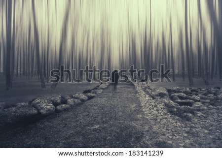 man walking on a path in a strange dark forest ,shadow man in forest ,motion blur forest ,man  silhouette unusual  - stock photo