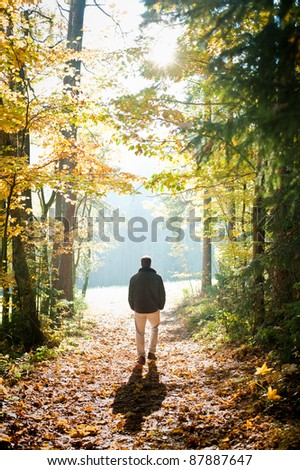 Man walking on a path through the forest - stock photo