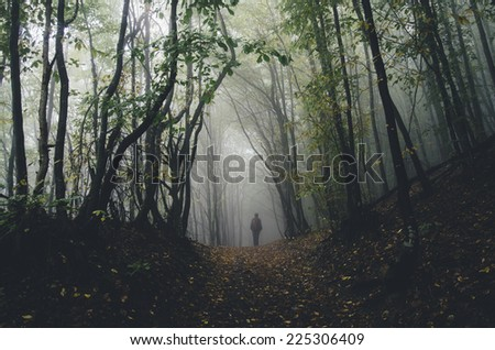 man walking on forest path spooky scene - stock photo