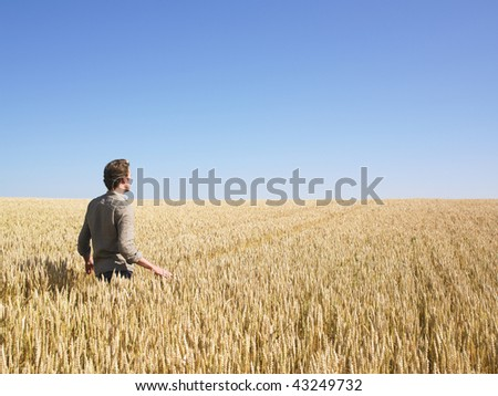 Man walking through in wheat field. Horizontally framed shot. - stock photo