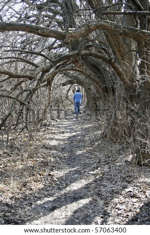 Man walking trail with hanging branches as archway. - stock photo