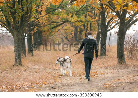 man walking with a dog Husky
